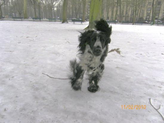 Derek s'éclate dans la neige