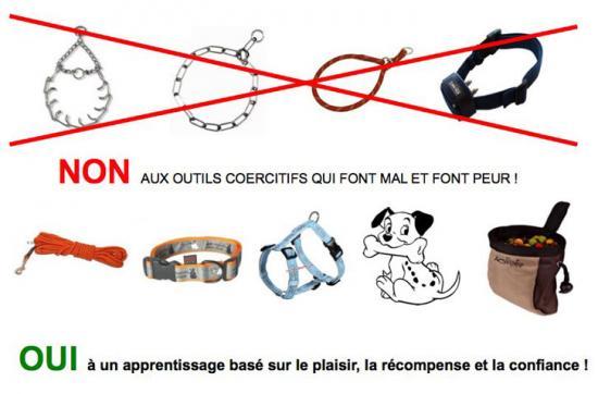 colliers-etrangleurs-barres.jpg